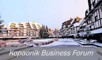 Veliko interesovanje za Kopaonik biznis forum