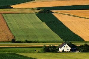poljoprivreda.jpg