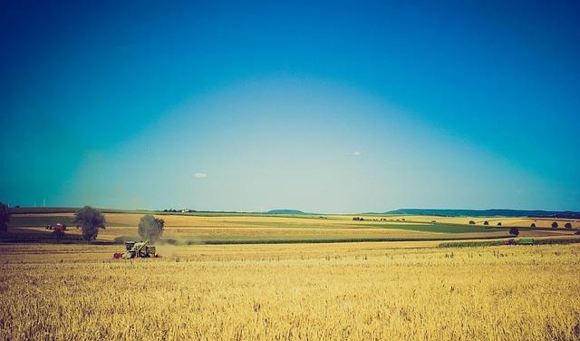 poljoprivreda1.jpg