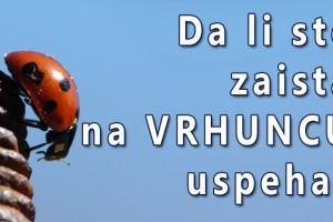 SAVET DANA: Vladika Nikolaj Velimirović o uspehu
