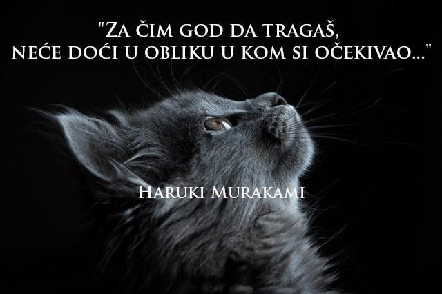 murakai-savet