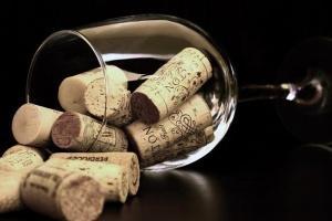 Šta nas sprečava da pijemo vino i čitamo knjige?