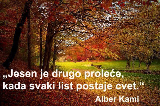jesen_savet_pix