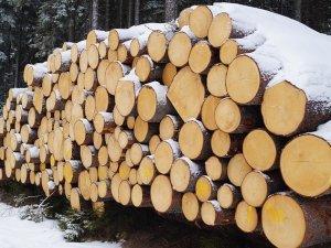 drva-pix