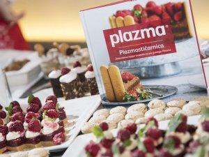 plazmasticarnica-1