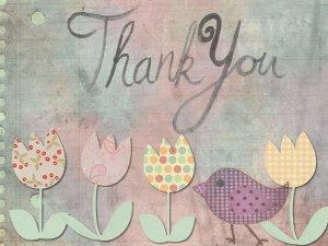 thank-you-hvala