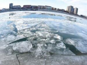 Novi Sad, 8. 1. 2017.- Nis, 8.1.2017. - Dunav se ledi kod Novog Sada. (BETAPHOTO/DRAGAN GOJIC/EV)