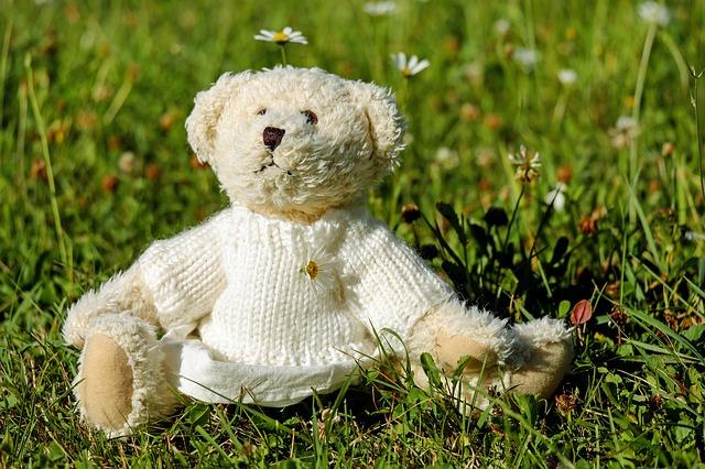 medved, igračka_pixabay