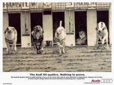 Audi nema razlog da se dokazuje