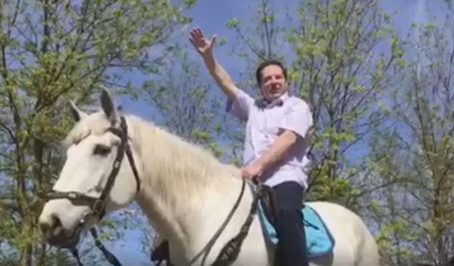 bogoljub-karic-konj