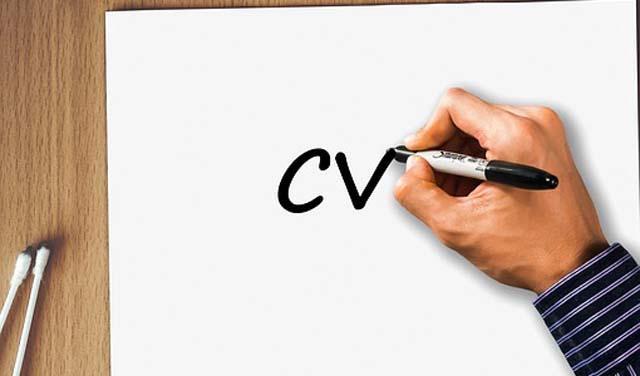radna-biografija-cv-pixabay