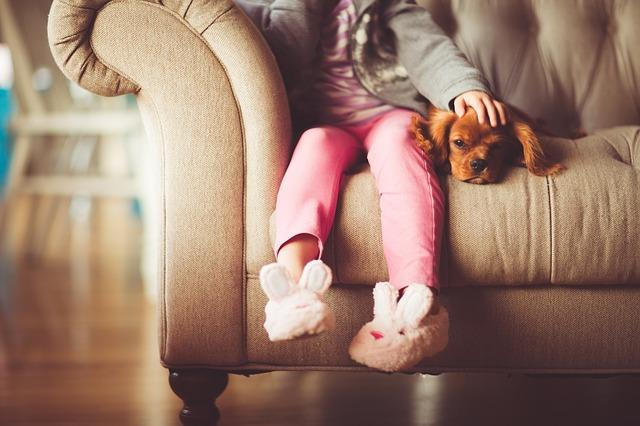 prijatelj, devojčica, kuca, dete_pixabay
